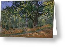 The Bodmer Oak Greeting Card