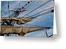 The Bounty's Rigging Greeting Card