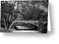 The Bridal Path Greeting Card
