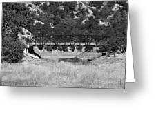 The Bridge 13 Greeting Card