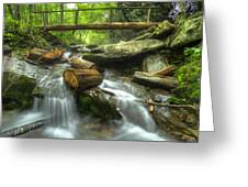 The Bridge At Alum Cave Greeting Card by Debra and Dave Vanderlaan