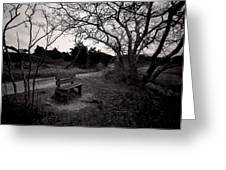 The Brooding Bench Greeting Card