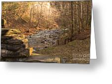 The Brook Greeting Card