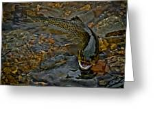 The Brown Trout Greeting Card by Ernie Echols