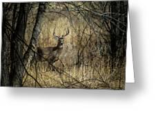 The Buck Greeting Card