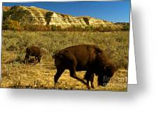 The Buffalo Dance Greeting Card