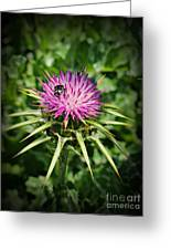 The Bug And The Thistle Greeting Card