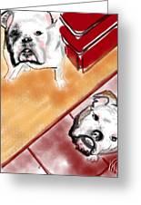 The Bulldogs Greeting Card
