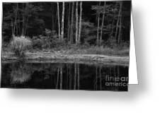 The Bush By The Lake Bw Greeting Card