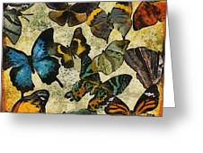The Butterfly Collection #1 Greeting Card