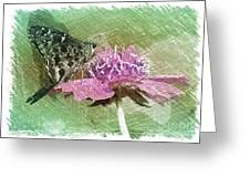 The Butterfly Visitor Greeting Card