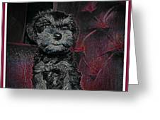 The Canine's Throne  Greeting Card