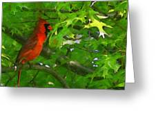The Cardinal 2 Painterly Greeting Card