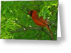 The Cardinal Painterly Greeting Card