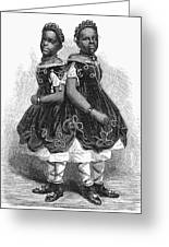 The Carolina Twins, 1866 Greeting Card