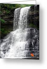 The Cascades 1 Greeting Card