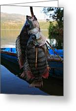 The Catch - Begnas Lake - Nepal Greeting Card