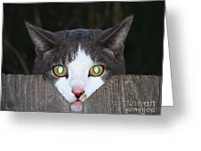 The Cat's Meow Greeting Card by Wendy McKennon