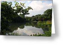 The Central Park Pond Greeting Card