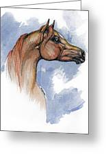 The Chestnut Arabian Horse 4 Greeting Card