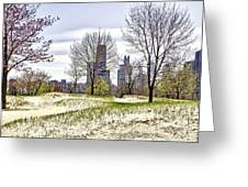 The Chicago Skyline Day-002 Greeting Card