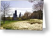 The Chicago Skyline Day-003 Greeting Card