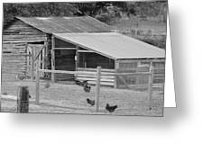 The Chicken House Greeting Card