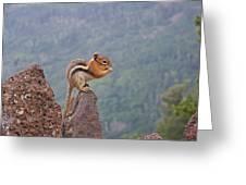 The Chipmunk Greeting Card