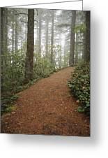 The Chosen Path Greeting Card