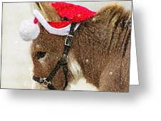 The Christmas Donkey Greeting Card