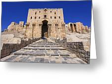 The Citadel In Aleppo Syria Greeting Card