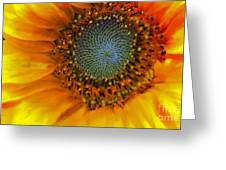 The Close Up Greeting Card
