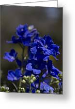 The Color Blue V6 Greeting Card