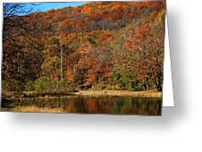 The Color Of Fall Greeting Card