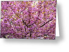 The Color Purple 2 Greeting Card