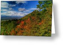 The Colors Of Fall Greeting Card by Judy  Waller