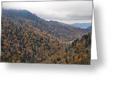 The Colors Of The Smokies Greeting Card