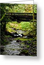 The Coming Of Autumn - Barnes Creek - Lake Crescent - Washington Greeting Card