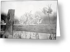 The Country Fence In Black And White Greeting Card