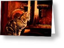 The Crane Yard Cat Greeting Card