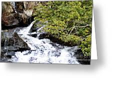 The Creek At Anna Ruby Falls Greeting Card