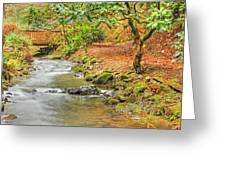 The Creek 0061 Greeting Card
