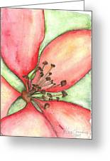 The Crowd Pleaser 1 Greeting Card by Sherry Harradence