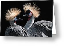 The Crowned Cranes Greeting Card