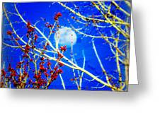 The Day The Moon Stayed Out All Day Greeting Card