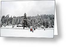 The Dazzle Of Winter Trees At Gulmarg - Kashmir- India- Viator's Agonism Greeting Card by Vijinder Singh