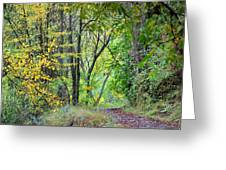The Dense Forest Greeting Card