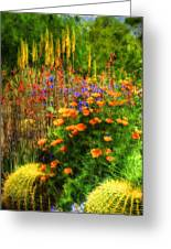 The Desert Abloom Greeting Card