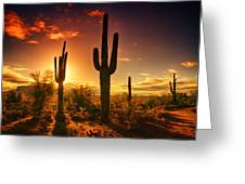 The Desert Awakens  Greeting Card