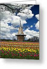The Dezwaan Dutch Windmill Among The Tulips On Windmill Island In Holland Michigan Greeting Card